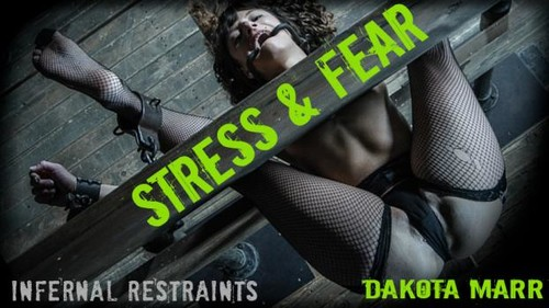 Stress And Fear [SD]