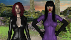 Future Fantasy Harem Version 0.3 +Compressed by Niteowl Games Win/Mac/Linux