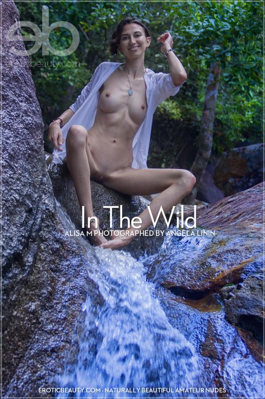Alisa M - In The Wild Alisa M (01-02-2020)