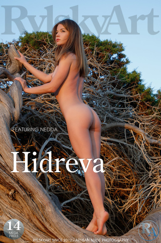 Nedda Hidreva (10-08-2020)