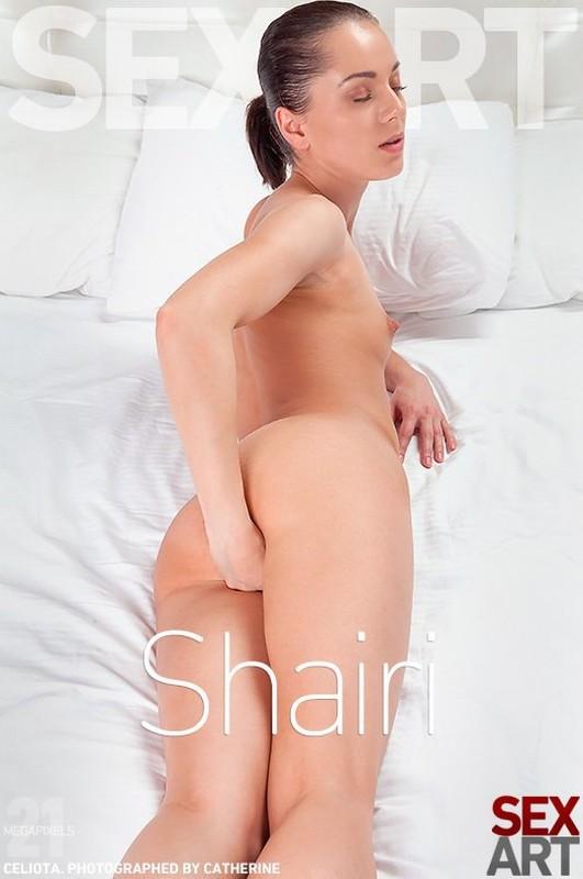 Celiota - Shairi (x122)