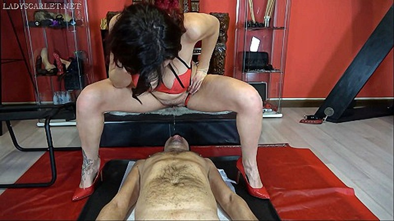 LadyScarlet - Face chair and pee [FullHD 1080P]