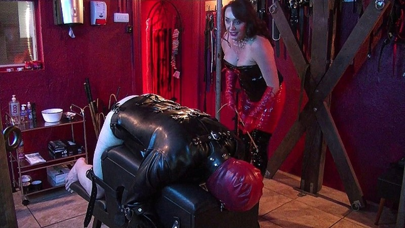 Goddess Salvia Administers Corporal Punishment With A Variety Of Canes [FullHD 1080P]