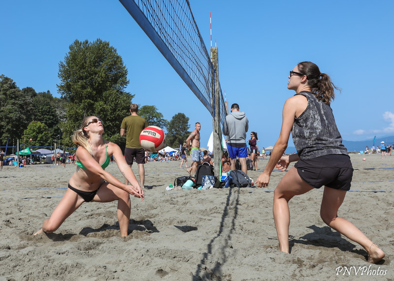 beach volleyball team in shorts & bathing suits