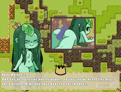 Towerfag - Princess And Conquest Version 0.17.15