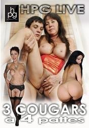 i2fncrwq25fj - 3 Cougars A 4 Pattes