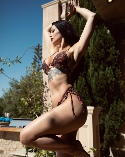 Paige Drops Stunning Bikini Photo While Borrowing Britney Spears Line
