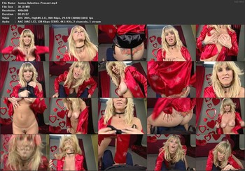 Janine Lindemulder - The Valentine Present, 360p