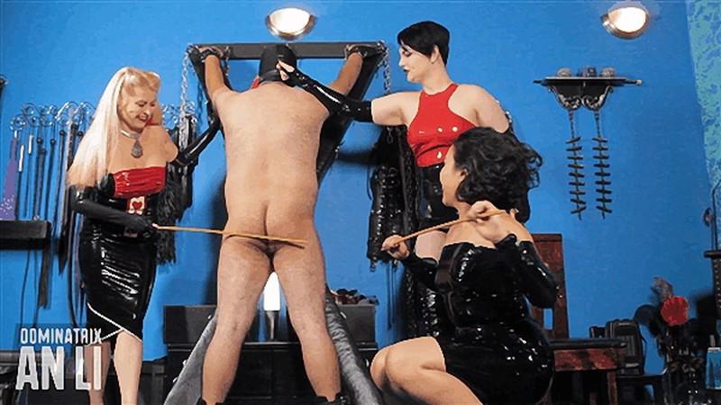 Mistress An Li - Making an Ass of Yourself [FullHD 1080P]