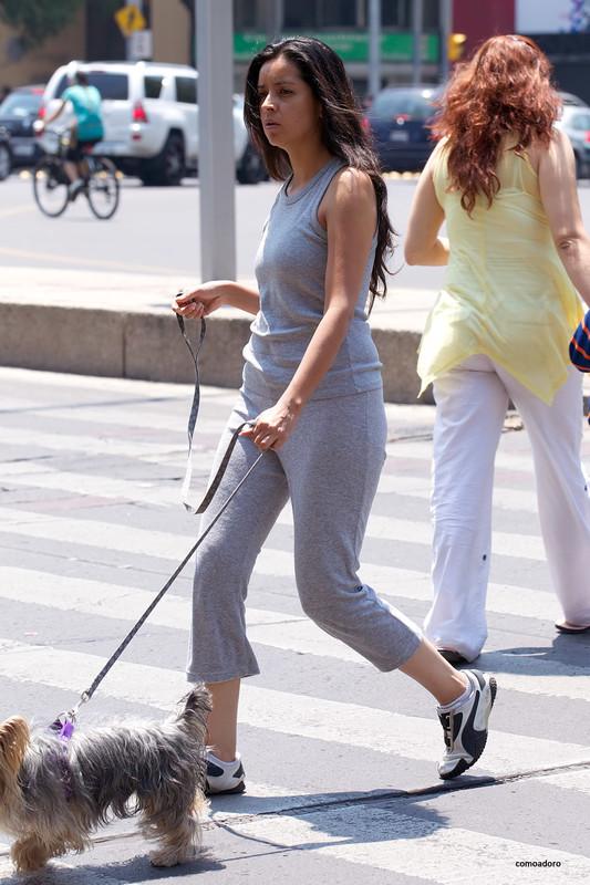 lady dogwalker in sexy grey sweat pants