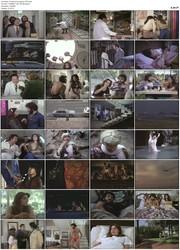 El vuelo de la ciguena (1979)