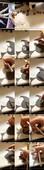 FeliciaVox_15f1f6e6815449a814.jpg