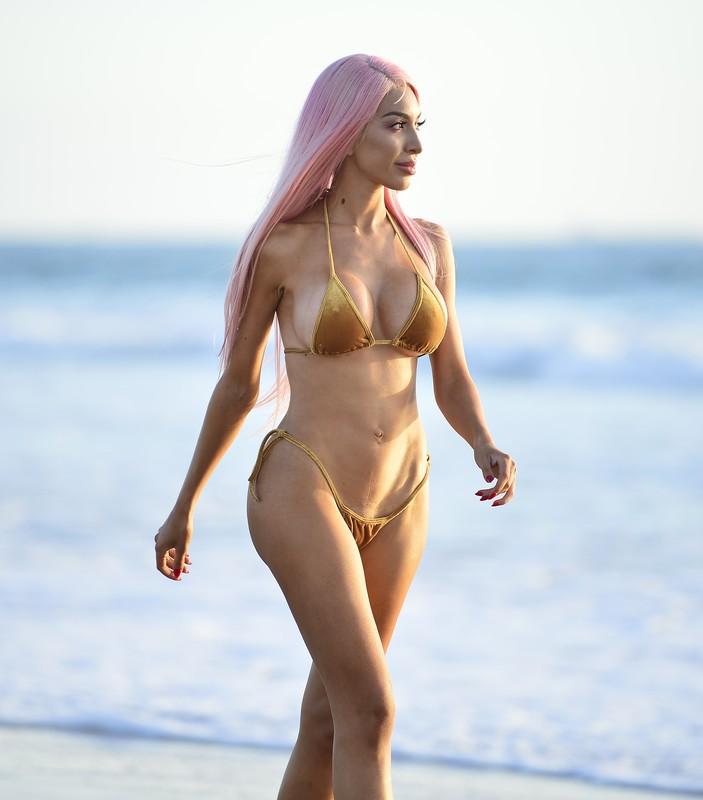 remarkable lady Farrah Abraham in sexy bikini